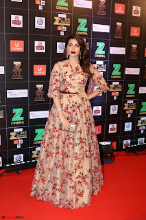 Bollywood Celebrities on the Red Carpet Of Zee Cine Awards 2017 Exclusive 124.JPG
