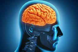 Waspadai 8 Ciri Kanker Otak yang Bisa Menyerang Anda