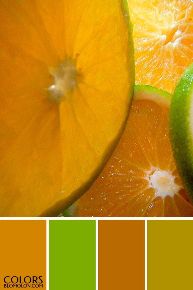 paletas_de_colores_mes_de_septiembre_2