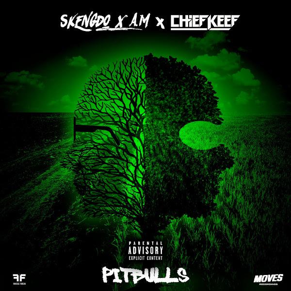 Skengdo, AM & Chief Keef - Pitbulls - Single Cover