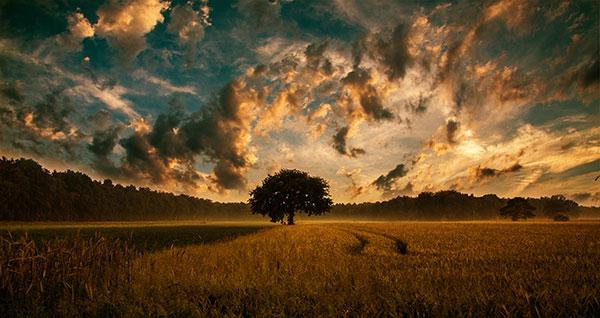 Efek Sunset Di GIMP