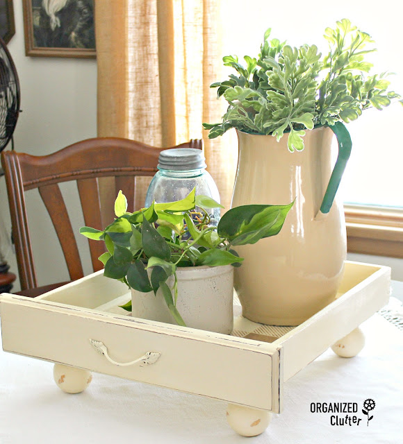 Photo of a drawer repurposed as a houseplant tray