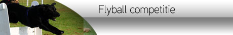 http://www.flyballcompetitie.nl/