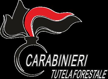 Tutela ambientale: conferenza al Comando Carabinieri Forestali Basilicata