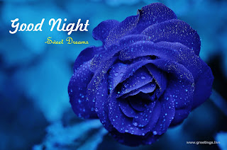 good night sweet dreams blue rose wishes