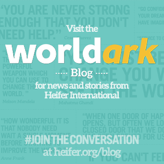 Heifer International Blog