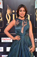 Shriya Saran in Beautiful Transparent Dark Gown IIFA Utsavam Awards 2017 067.JPG