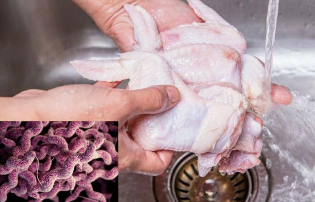 Bahaya, Ternyata Mencuci Daging Ayam Mentah dapat Menyebarkan Wabah Penyakit