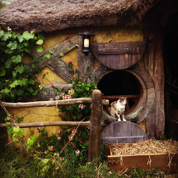 hobbiton hobbit house