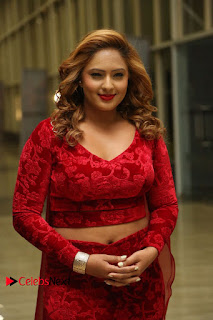 Actress Nikesha Patel Pictures in Red Dress at Araku Road Lo Audio Launch  0011.JPG