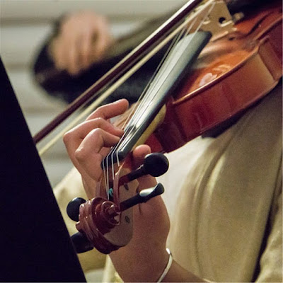 Cách chọn mua Violin tâm đắc nhất