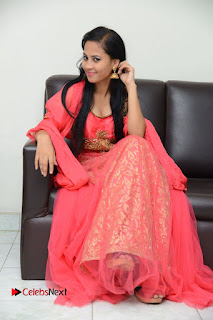 Actress Aasha Rakul Pictures in Red Long Dress at Vetade Puli Audio Launch 0107