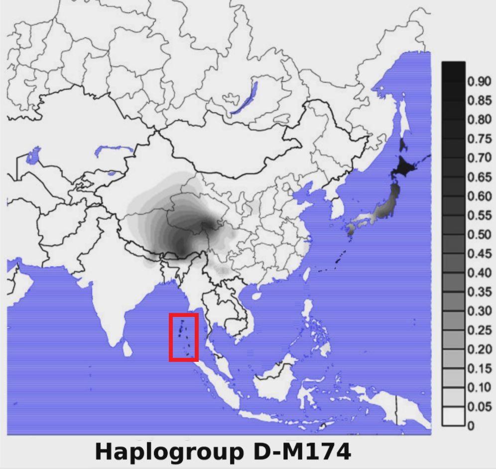 日本人は黒人?日本人と同じ【ハプログループ D】を持つ、チベット人と ...