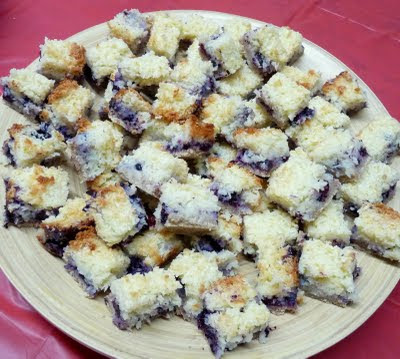 Blueberry Coconut Squares