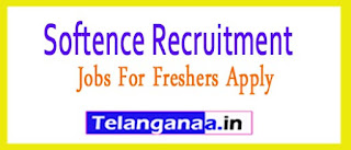 Softence Recruitment 2017 Jobs For Freshers Apply