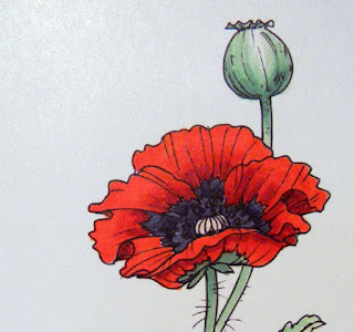 Justinklined Poppy corner detail