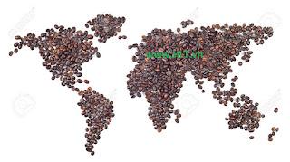 cà phê HLt