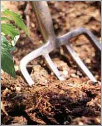 garden fork and mulch