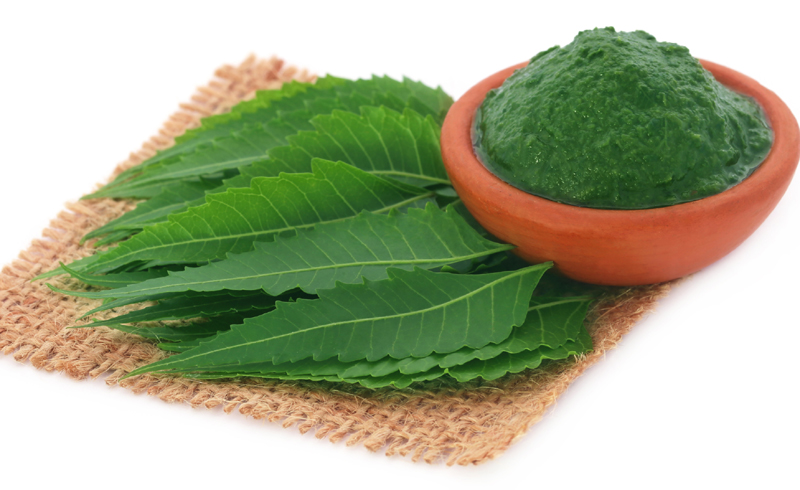 What makes neem an incredible anti-acne skincare hero?