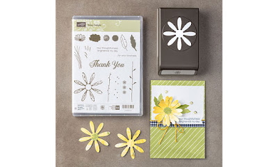 Craftyduckydoodah!, Daisy Delight, May 2017 Coffee & Cards Project, Stampin' Up! UK Independent  Demonstrator Susan Simpson, Supplies available 24/7 from my online store,