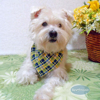 Sunny Yellow, Blue and Green Spring Plaid Dog Bandana