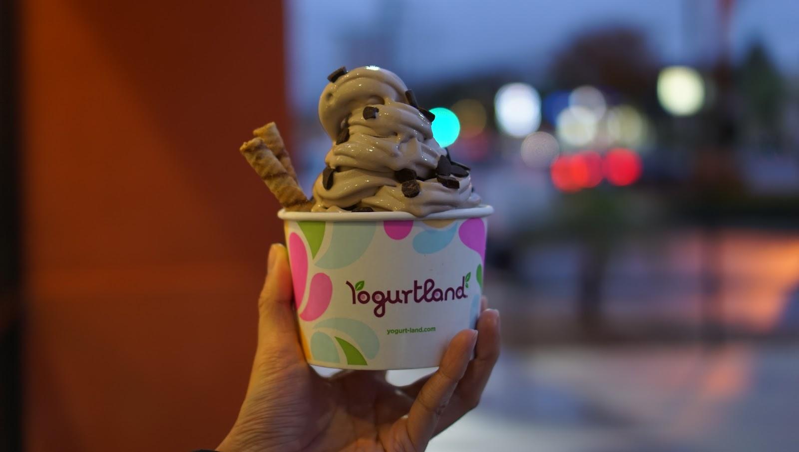 The Yogurtland Oreo Ice Cream Is My New FAVE!