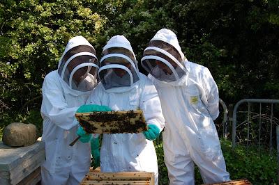 ΔΩΡΕΑΝ Μελισσοκομικό σεμινάρια στην ΔΕΛΤΑ ΜΕΛΙΣΣΟΚΟΜΙΚΗ