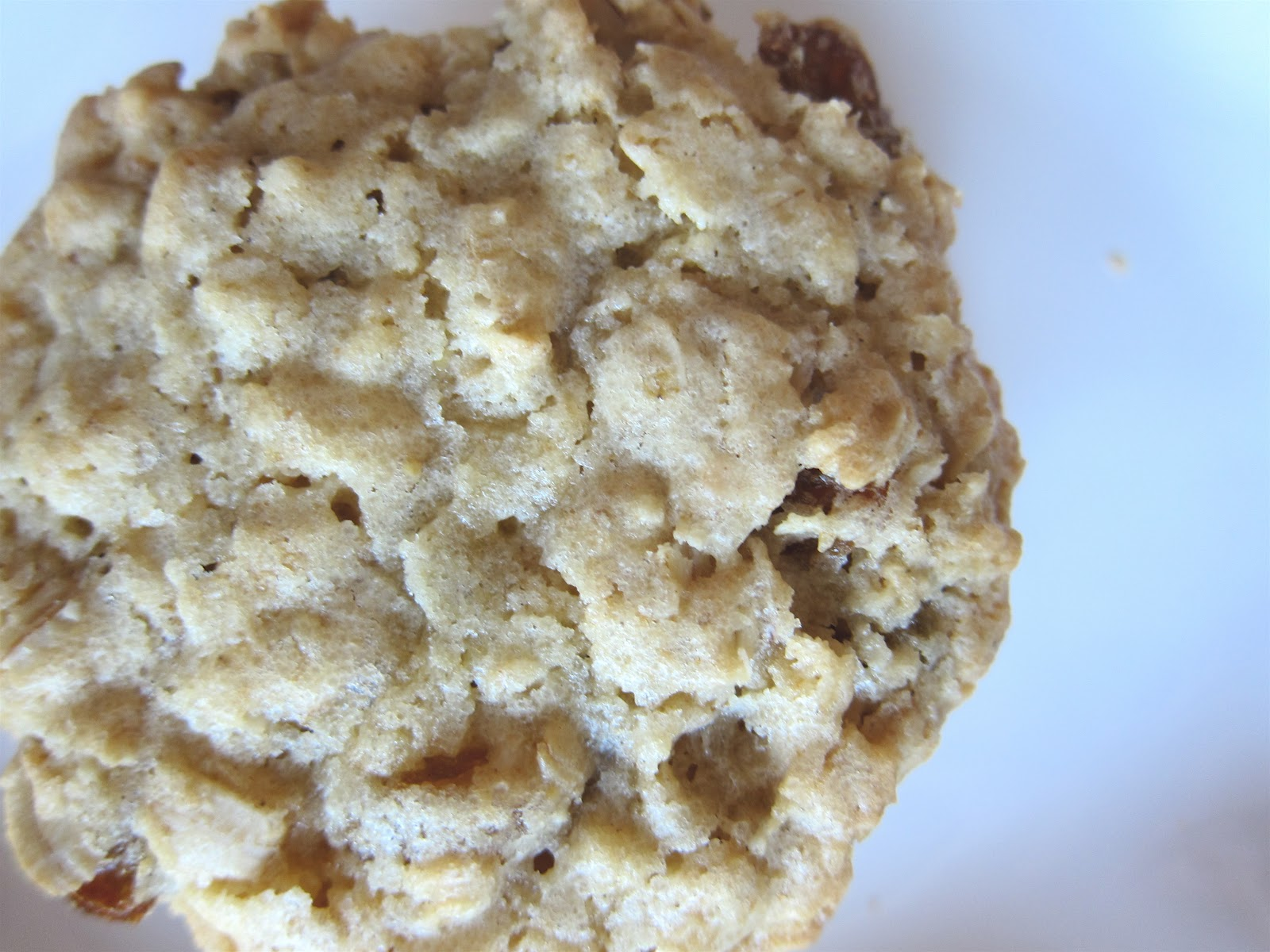 America S Test Kitchen Chewy Oatmeal Cookies