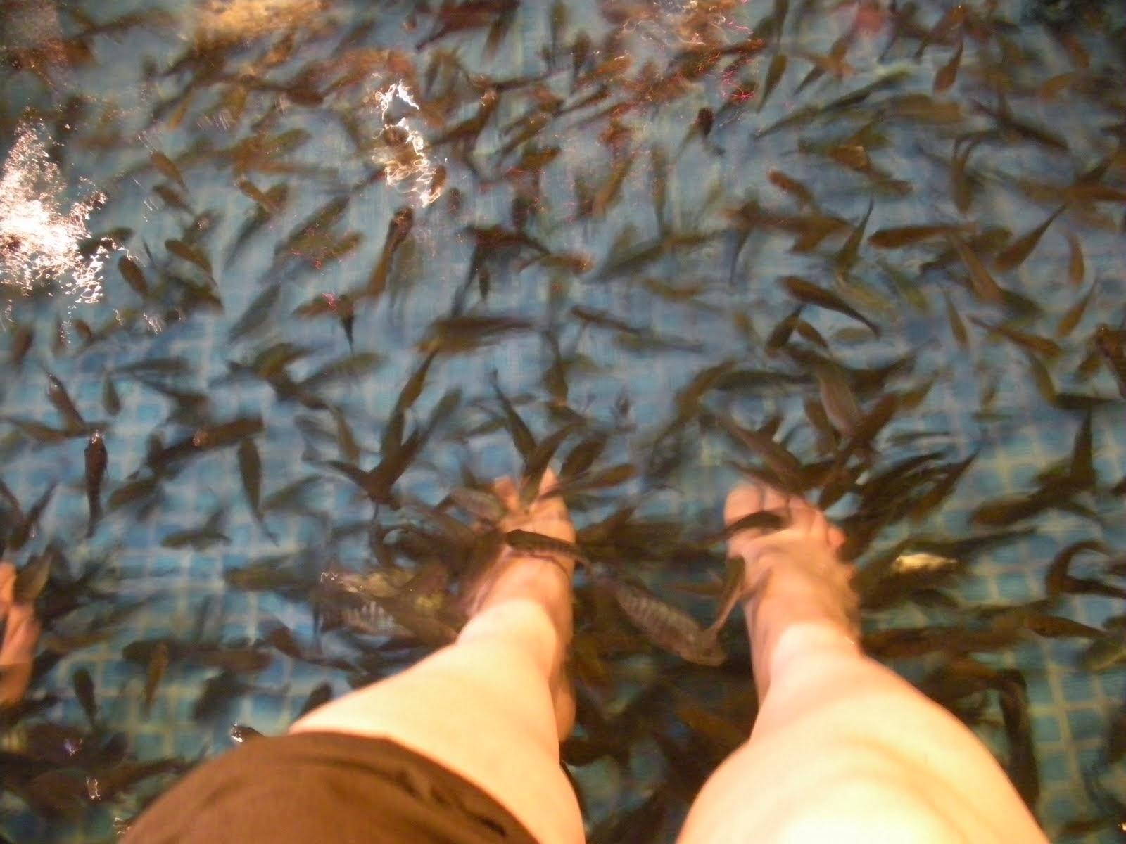 Fish Spa - Kuala Lumpur
