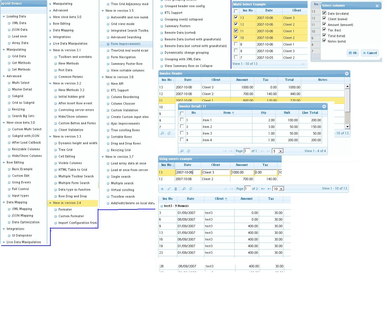 Common Editing Properties jQuery Grid Plugin jqGrid - mandegar info