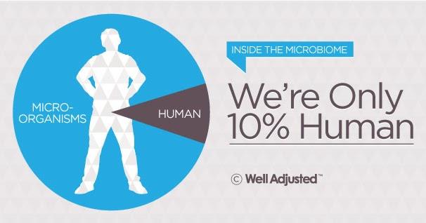 bacterias que afectan la piel humana