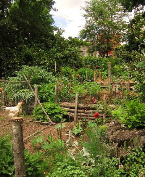 Design Your Own Permaculture Garden