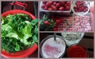 czerwiec sałaty z ogrodu, truskawki, czereśnie, rzodkiewka, margarytka