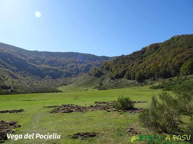 Ruta Vega Pociellu y Bosque Fabucao: Entrada en la Vega del Pociellu