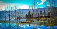 Danau Tamblingan - Lovina Singaraja Tour