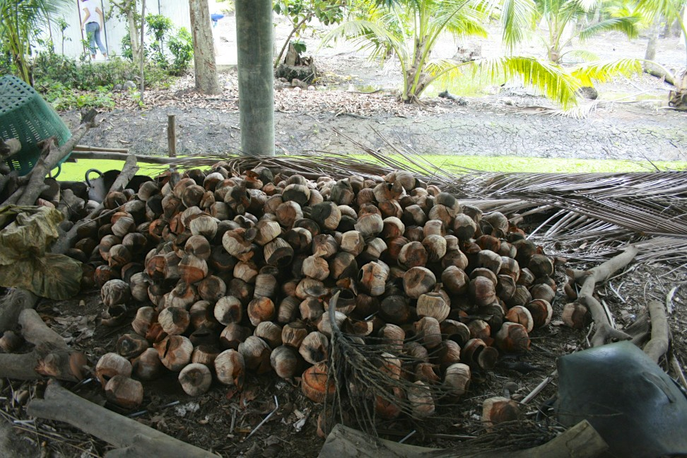 how to make a hole in a coconut shell
