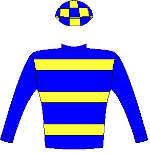 CYBER LAW - Jockey Silks - Horse Racing