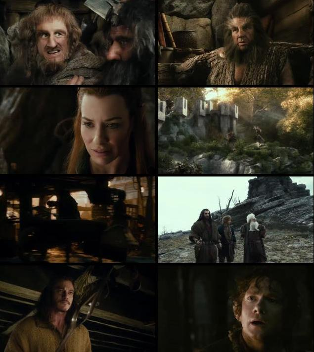 The Hobbit The Desolation Of Smaug 2013 Extended Dual Audio Hindi 480p BluRay