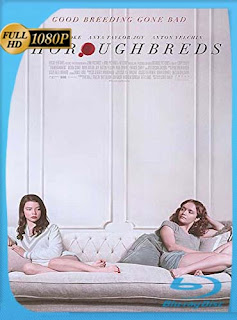 Thoroughbreds (2017) HD [1080p] Latino [GoogleDrive] SilvestreHD