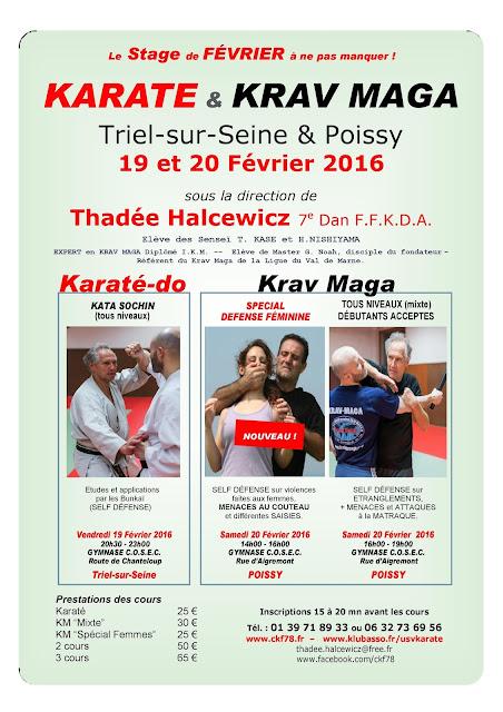 Stage Karaté à Triel sur Seine et Krav Maga à Poissy 2016