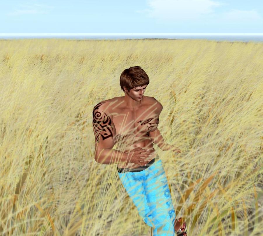 life virtual gay