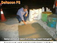 Deltacon FS