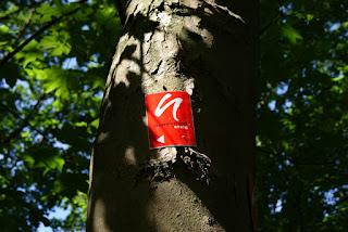 Das Logo des Neanderland STEIG an einem Baum