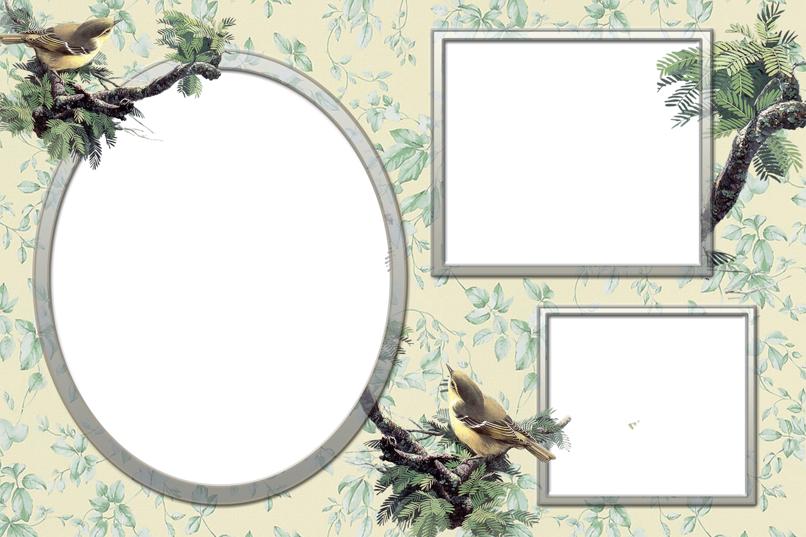 Frames wallpapers designs nature frames for S design photo