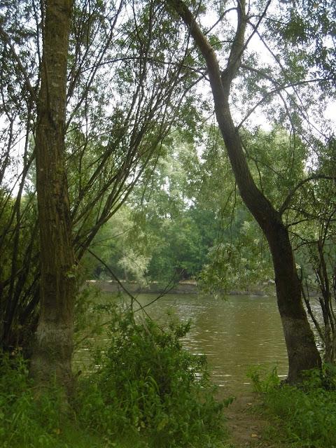 Baignade dans la Dordogne, Calviac, malooka
