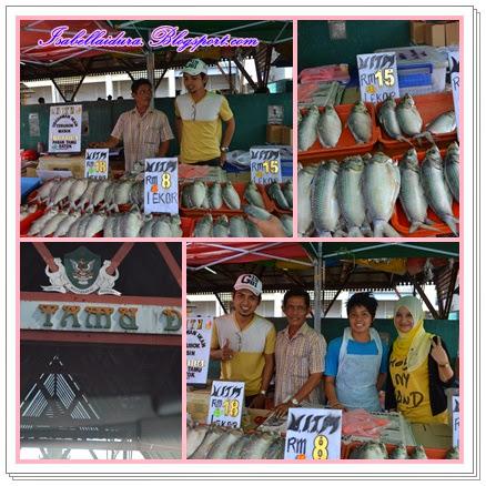 ikan terubok masin sarawak murah