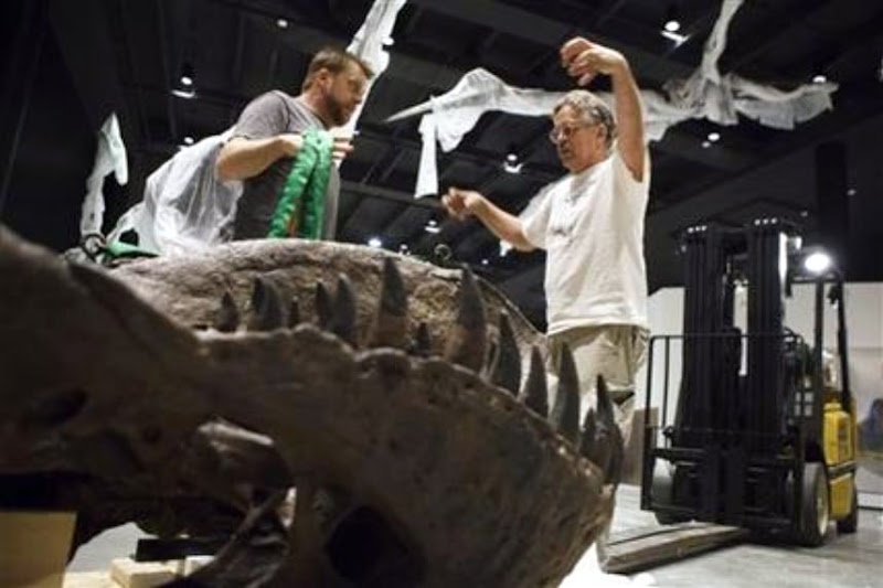 Houston museum unveils $85 million dinosaur hall