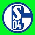 Schalke 04 www.nhandinhbongdaso.net
