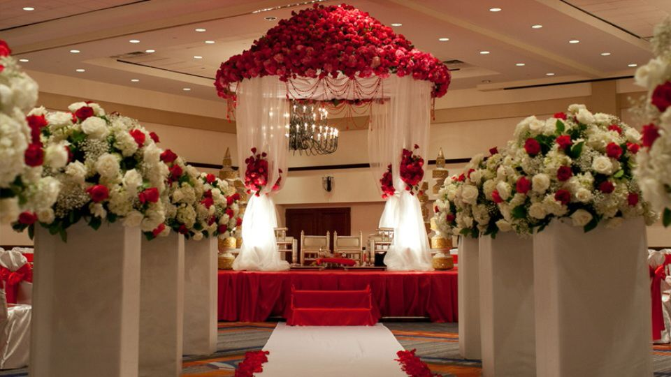 Pluspoint events event management company in calicut cochin kerala event management company in calicut cochin kerala junglespirit Choice Image
