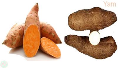 ওলকচু; Yam; patate douce; Süßkartoffel; ubi; patata dolce; ヤムイモ; сладкий картофель; batata; بطاطا; रतालू